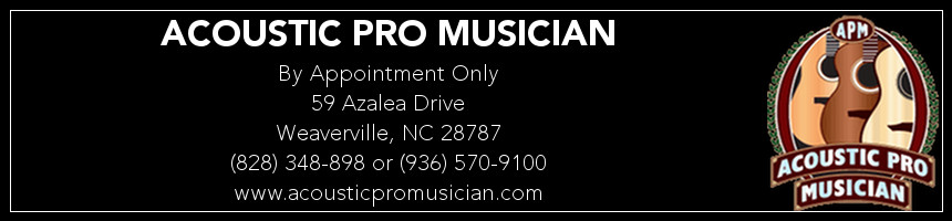 Acoustic Pro Musician Dl Page Banner