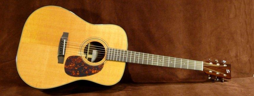 D22SR-A-Bluegrass Main